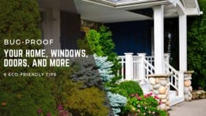 Tips for Bug Proofing Your Home Blue Springs Siding and Windows